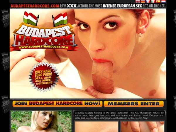 Budapest Hardcore Exit Discount